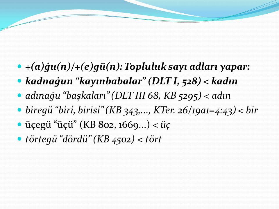 +(a)ġu(n)/+(e)gü(n): Topluluk sayı adları yapar: