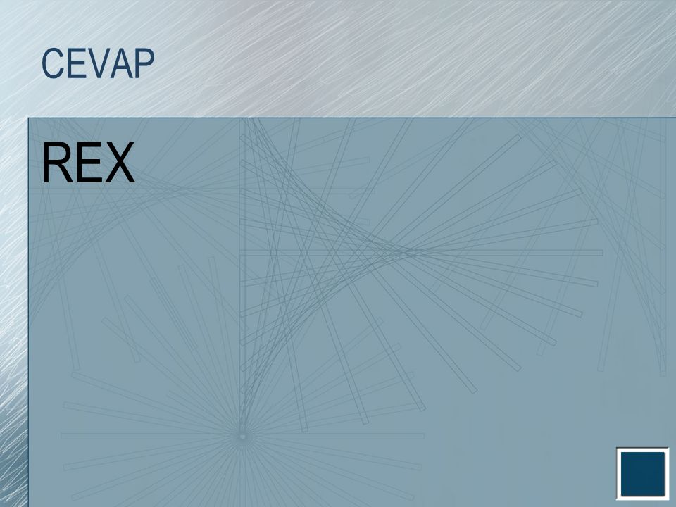 CEVAP REX