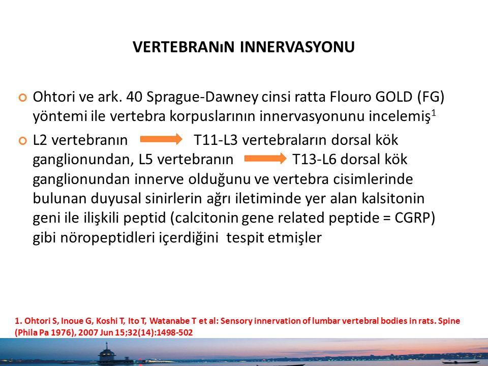 vertebranın innervasyonu