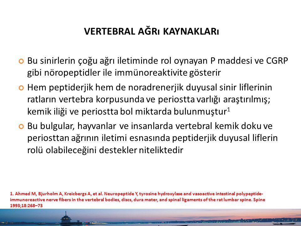 vertebral ağrı kaynakları