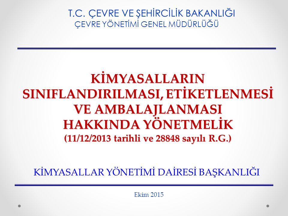 (11/12/2013 tarihli ve 28848 sayılı R.G.)