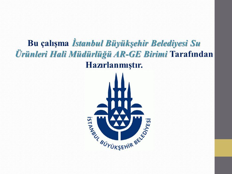 Bu çalışma İstanbul Büyükşehir Belediyesi Su Ürünleri Hali Müdürlüğü AR-GE Birimi Tarafından Hazırlanmıştır.