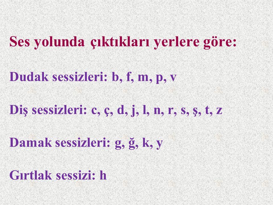 Ses yolunda çıktıkları yerlere göre: Dudak sessizleri: b, f, m, p, v Diş sessizleri: c, ç, d, j, l, n, r, s, ş, t, z Damak sessizleri: g, ğ, k, y Gırtlak sessizi: h