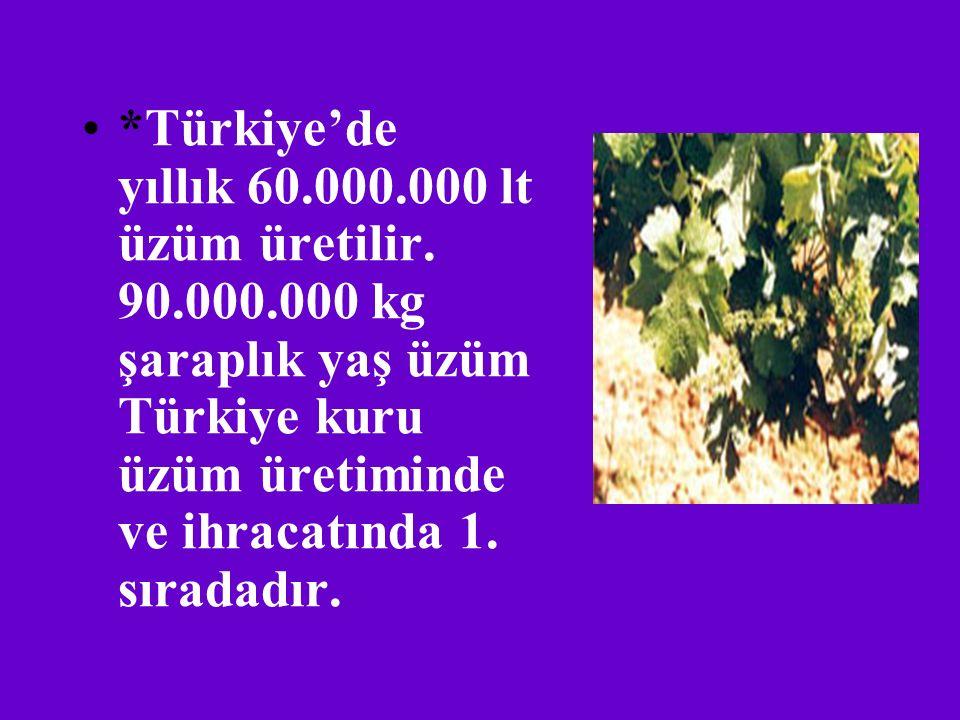 Türkiye'de yıllık 60. 000. 000 lt üzüm üretilir. 90. 000