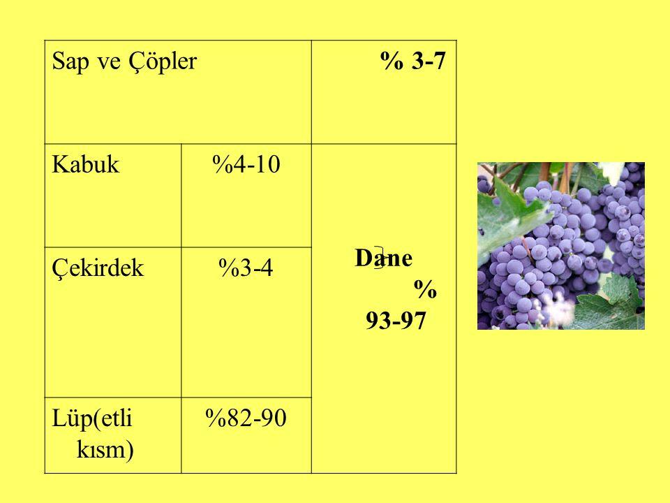Sap ve Çöpler % 3-7 Kabuk %4-10 Dane % 93-97 Çekirdek %3-4 Lüp(etli kısm) %82-90