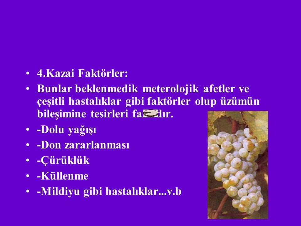 4.Kazai Faktörler: Bunlar beklenmedik meterolojik afetler ve çeşitli hastalıklar gibi faktörler olup üzümün bileşimine tesirleri fazladır.