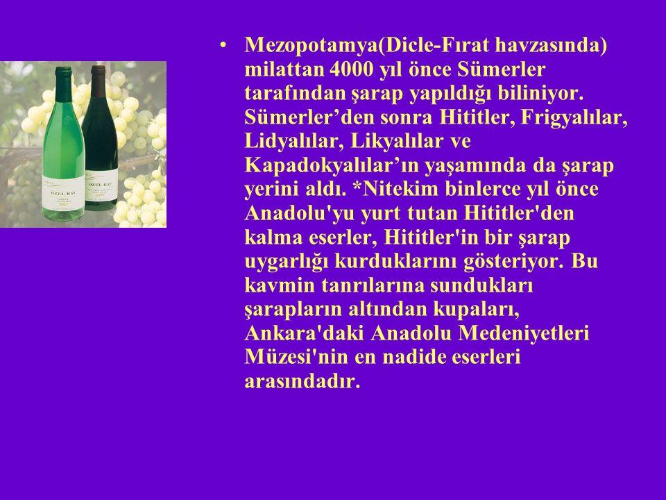Mezopotamya(Dicle-Fırat havzasında) milattan 4000 yıl önce Sümerler tarafından şarap yapıldığı biliniyor.