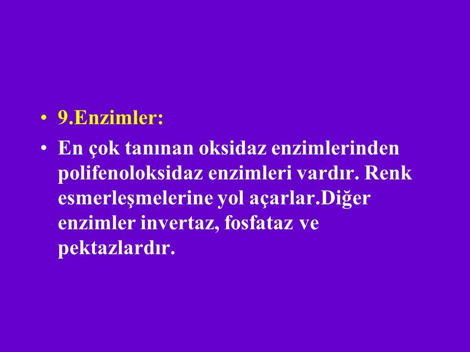 9.Enzimler: