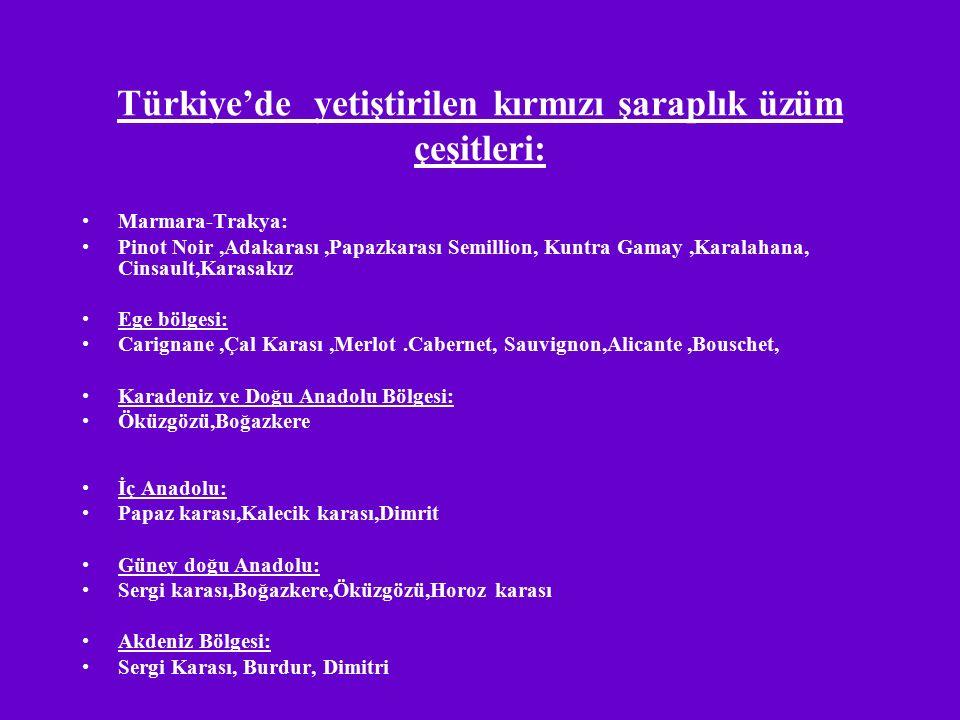 Türkiye'de yetiştirilen kırmızı şaraplık üzüm çeşitleri: