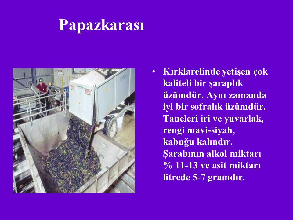 Papazkarası