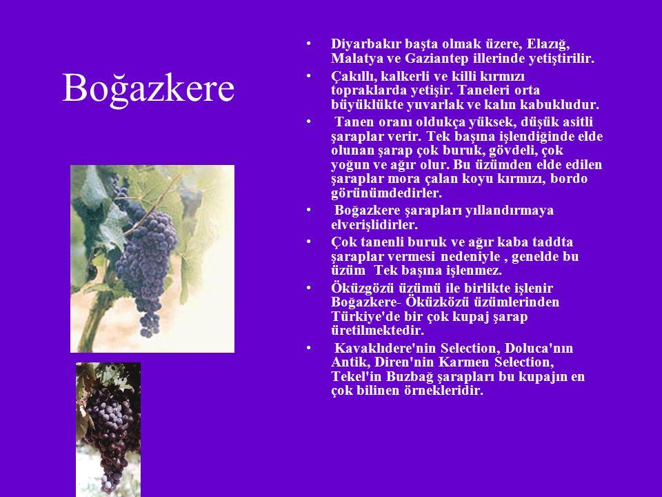 Diyarbakır başta olmak üzere, Elazığ, Malatya ve Gaziantep illerinde yetiştirilir.
