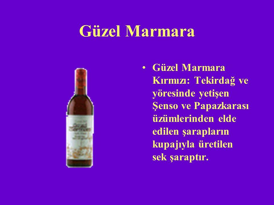 Güzel Marmara