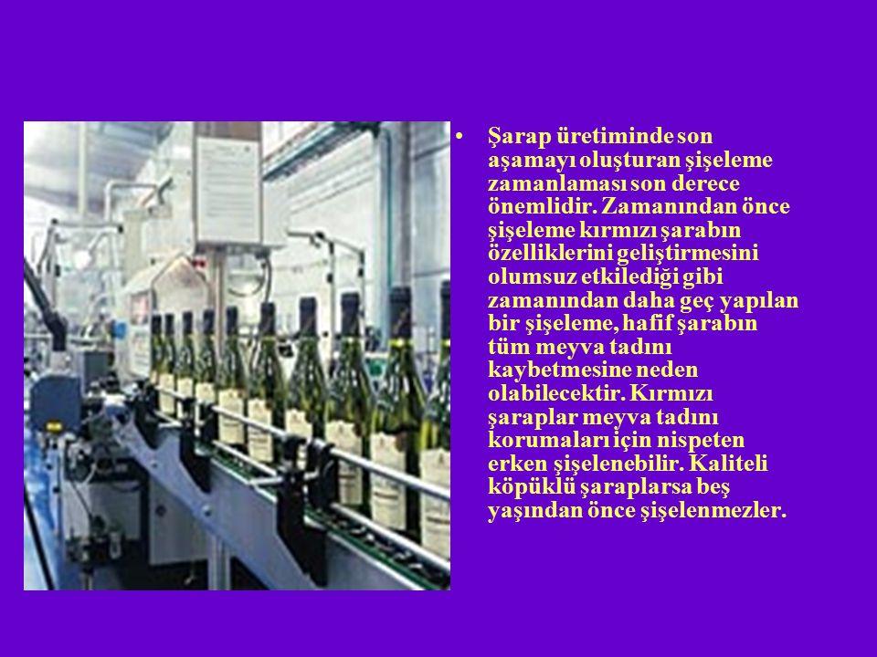 Şarap üretiminde son aşamayı oluşturan şişeleme zamanlaması son derece önemlidir.