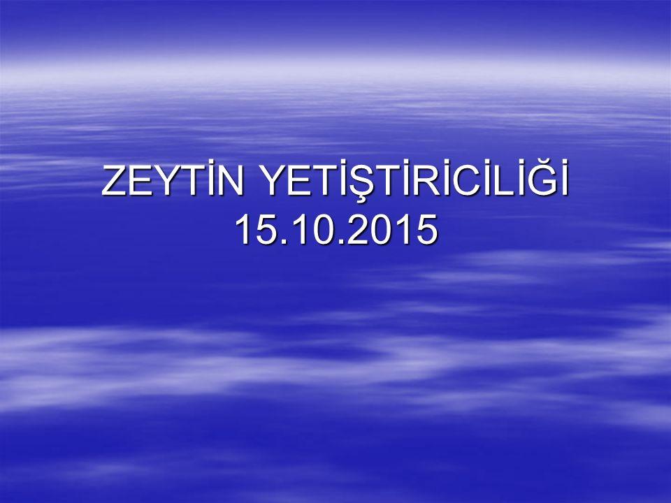 ZEYTİN YETİŞTİRİCİLİĞİ 15.10.2015