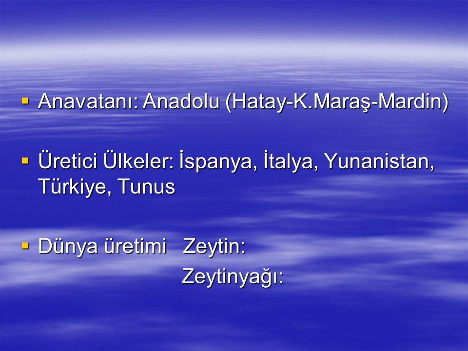 Anavatanı: Anadolu (Hatay-K.Maraş-Mardin)