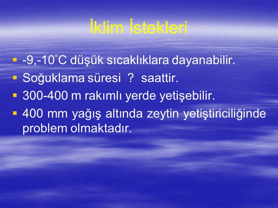 İklim İstekleri -9,-10°C düşük sıcaklıklara dayanabilir.
