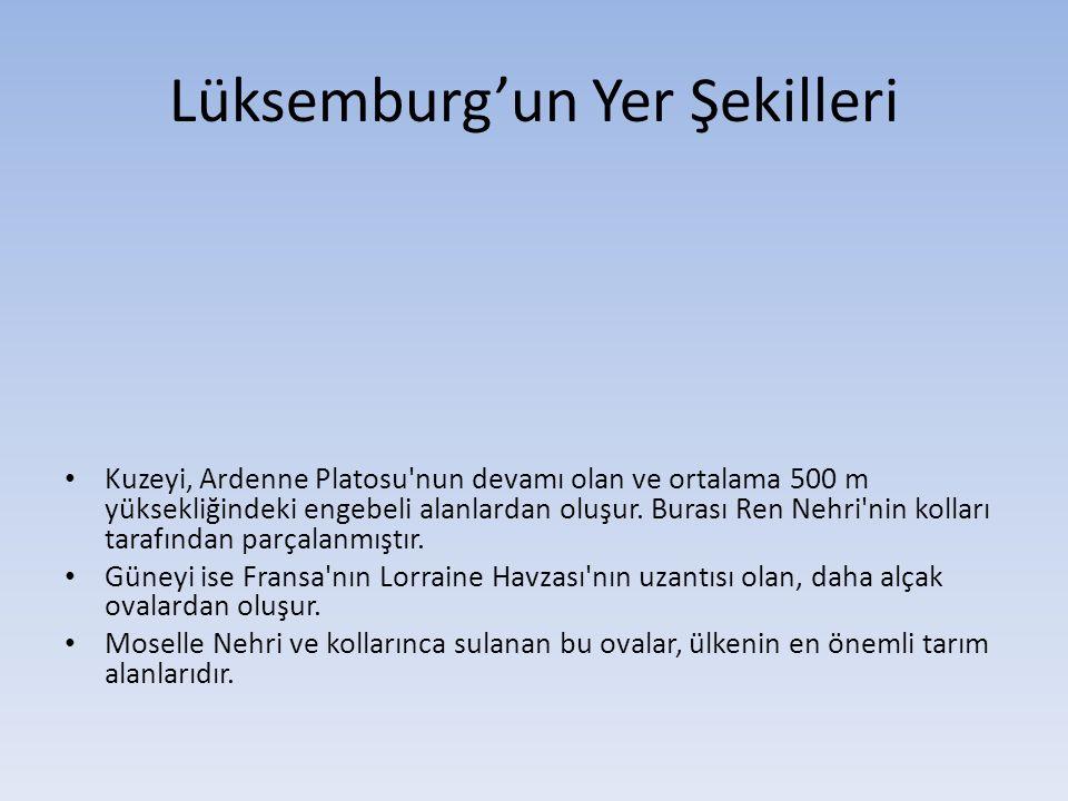 Lüksemburg'un Yer Şekilleri