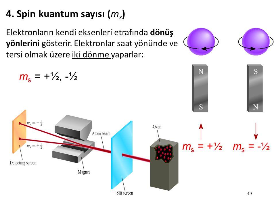 4. Spin kuantum sayısı (ms)