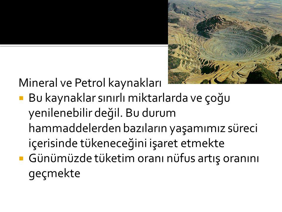Mineral ve Petrol kaynakları