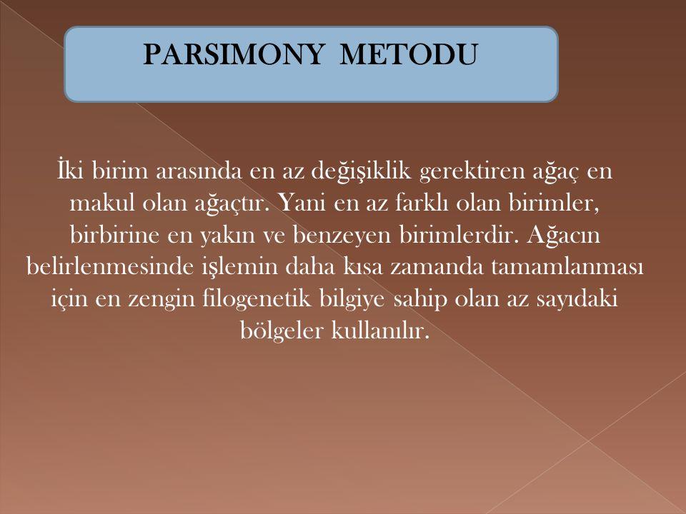 PARSIMONY METODU