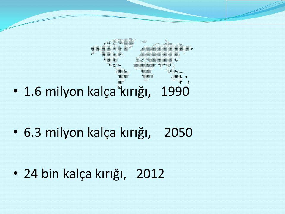 1.6 milyon kalça kırığı, 1990 6.3 milyon kalça kırığı, 2050
