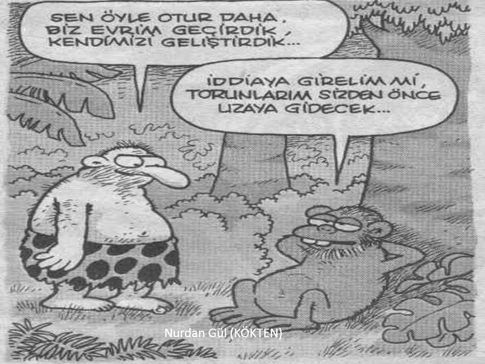 Nurdan Gül (KÖKTEN)