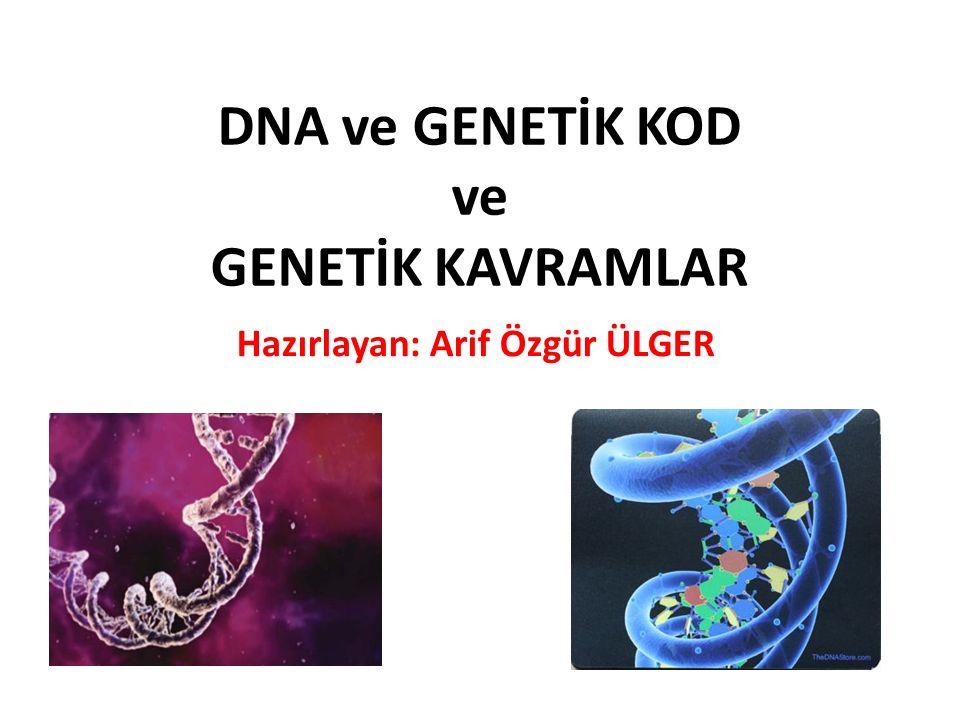 DNA ve GENETİK KOD ve GENETİK KAVRAMLAR