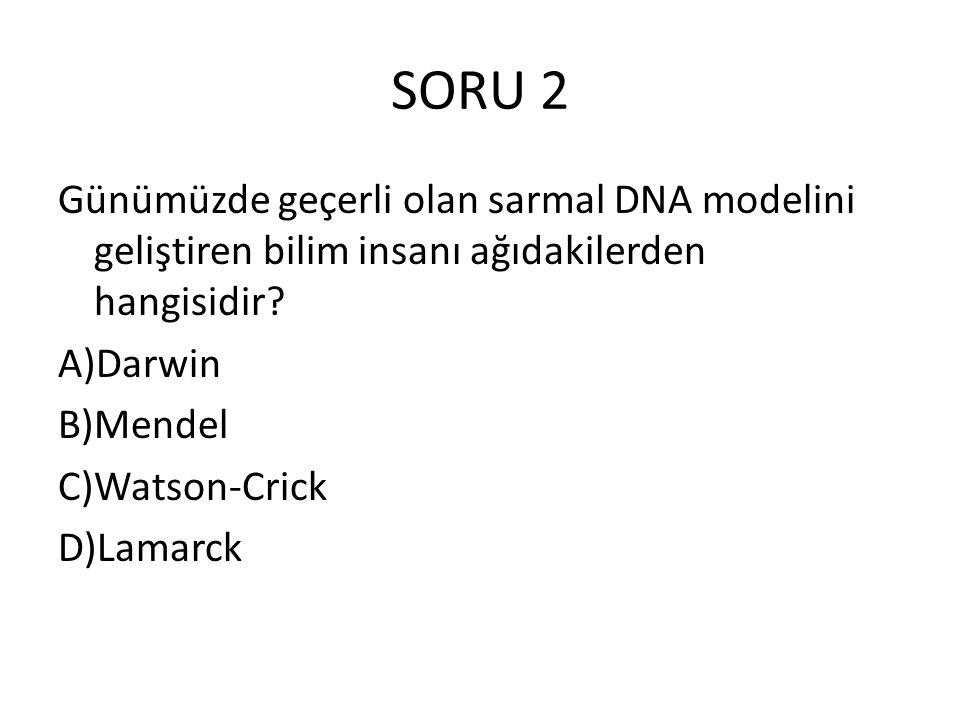 SORU 2 Günümüzde geçerli olan sarmal DNA modelini geliştiren bilim insanı ağıdakilerden hangisidir