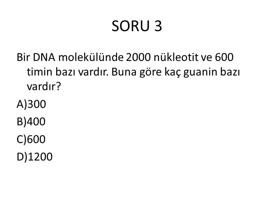 SORU 3 Bir DNA molekülünde 2000 nükleotit ve 600 timin bazı vardır. Buna göre kaç guanin bazı vardır