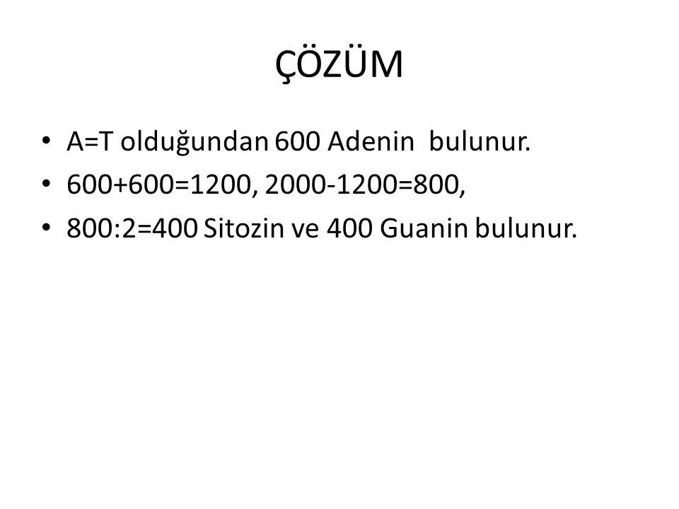 ÇÖZÜM A=T olduğundan 600 Adenin bulunur. 600+600=1200, 2000-1200=800,