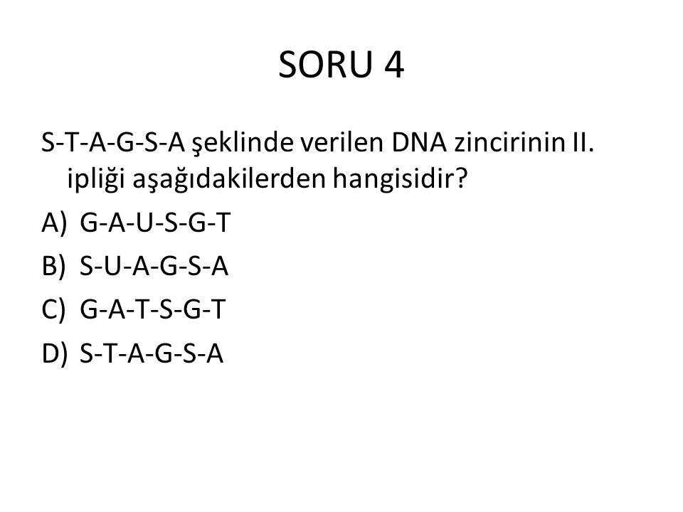 SORU 4 S-T-A-G-S-A şeklinde verilen DNA zincirinin II. ipliği aşağıdakilerden hangisidir G-A-U-S-G-T.