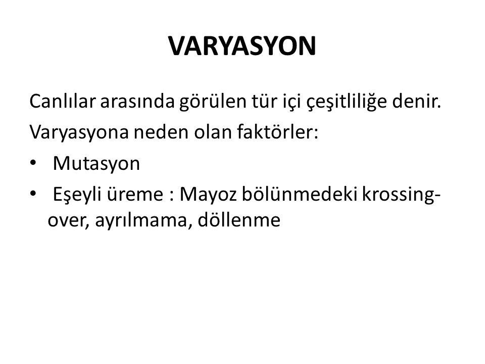 VARYASYON Canlılar arasında görülen tür içi çeşitliliğe denir.