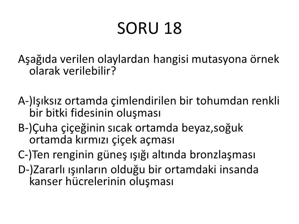 SORU 18 Aşağıda verilen olaylardan hangisi mutasyona örnek olarak verilebilir