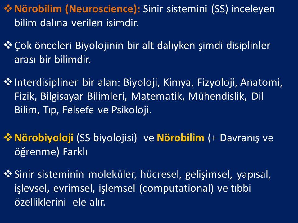Nörobilim (Neuroscience): Sinir sistemini (SS) inceleyen bilim dalına verilen isimdir.