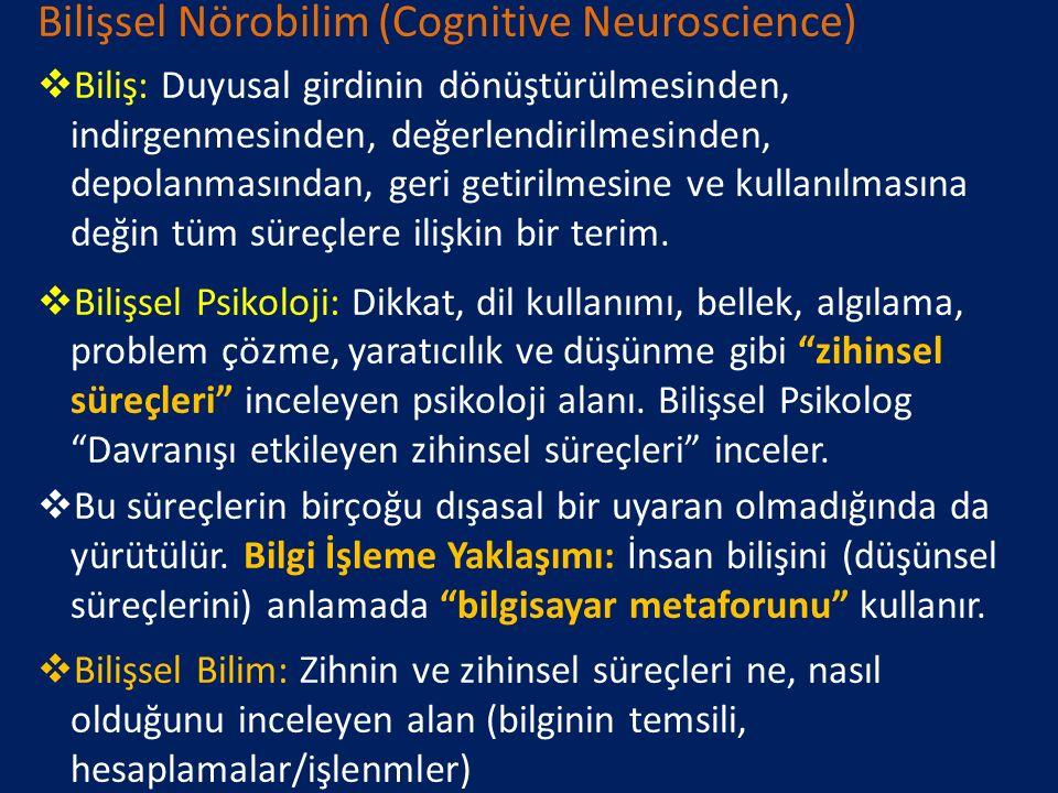 Bilişsel Nörobilim (Cognitive Neuroscience)