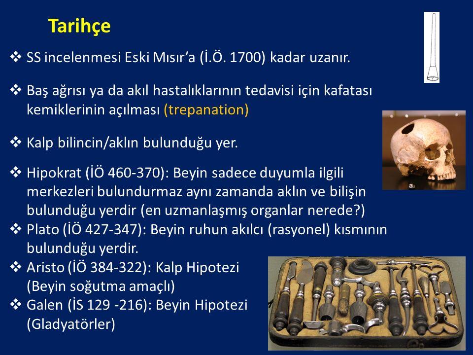 Tarihçe SS incelenmesi Eski Mısır'a (İ.Ö. 1700) kadar uzanır.