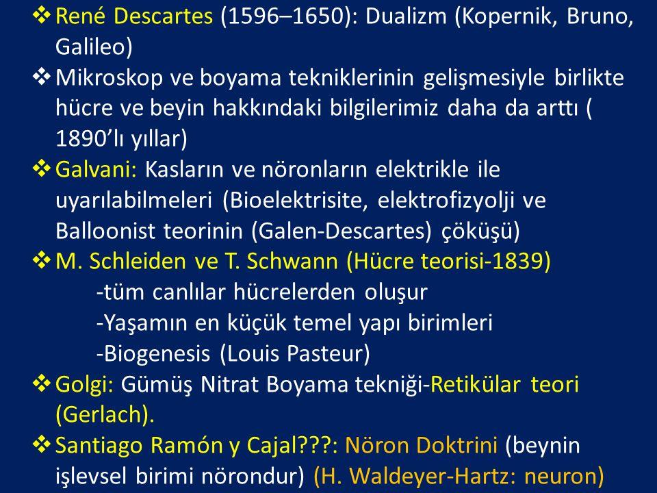 René Descartes (1596–1650): Dualizm (Kopernik, Bruno, Galileo)