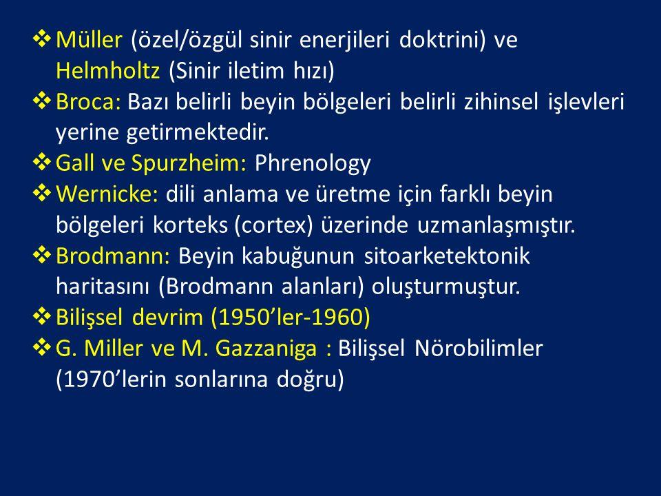 Müller (özel/özgül sinir enerjileri doktrini) ve Helmholtz (Sinir iletim hızı)
