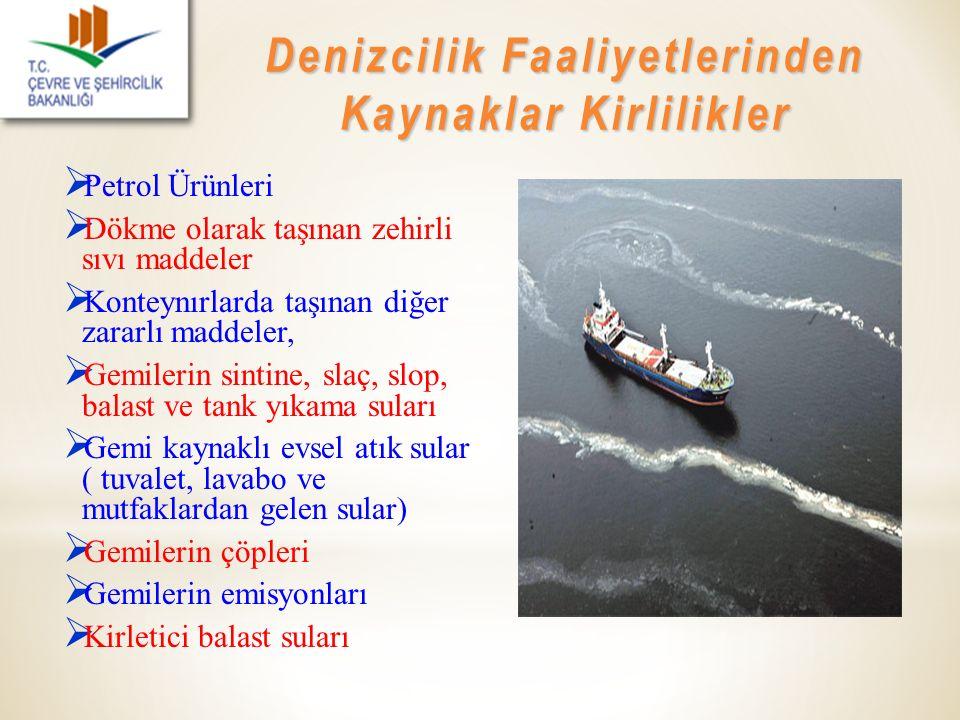 Denizcilik Faaliyetlerinden Kaynaklar Kirlilikler
