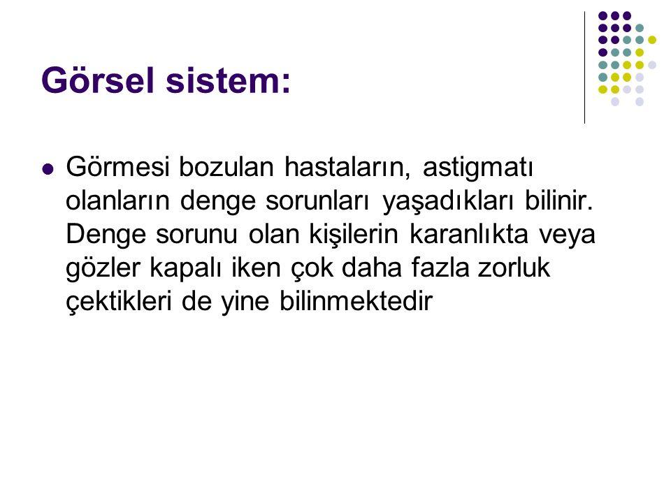 Görsel sistem:
