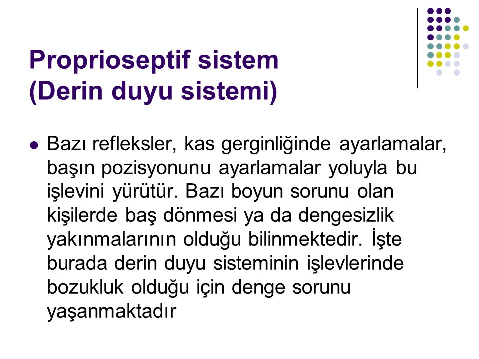 Proprioseptif sistem (Derin duyu sistemi)