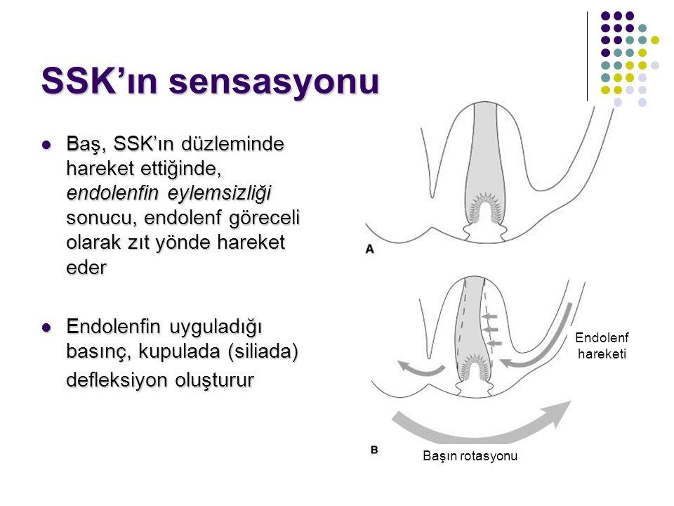SSK'ın sensasyonu Baş, SSK'ın düzleminde hareket ettiğinde, endolenfin eylemsizliği sonucu, endolenf göreceli olarak zıt yönde hareket eder.