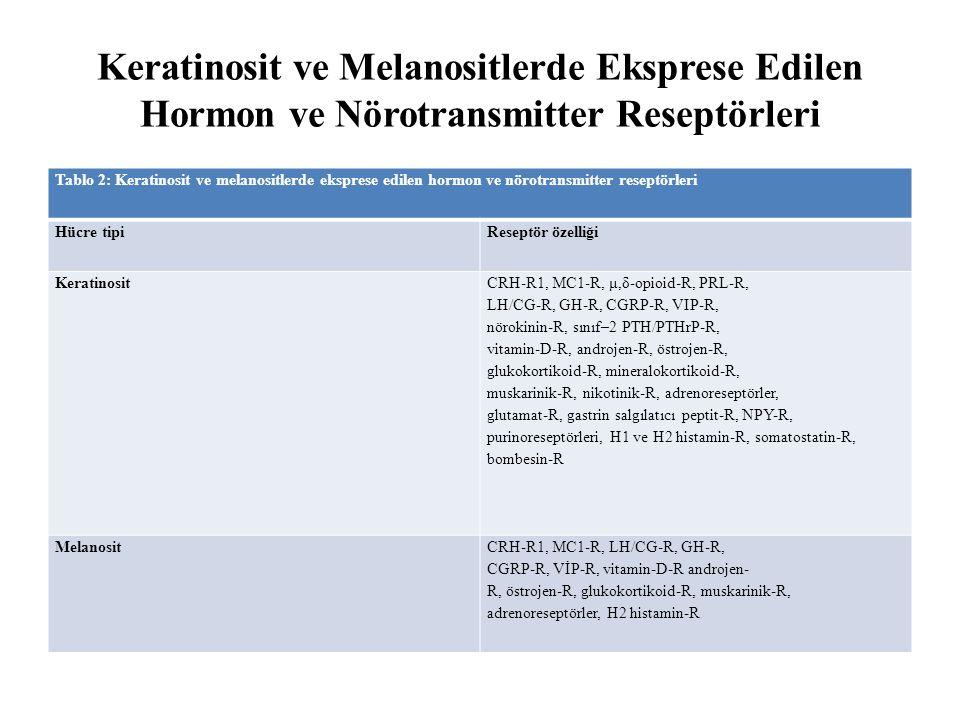 Keratinosit ve Melanositlerde Eksprese Edilen Hormon ve Nörotransmitter Reseptörleri