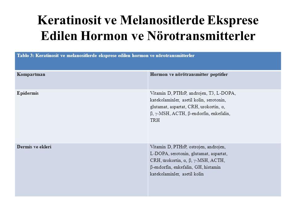 Keratinosit ve Melanositlerde Eksprese Edilen Hormon ve Nörotransmitterler