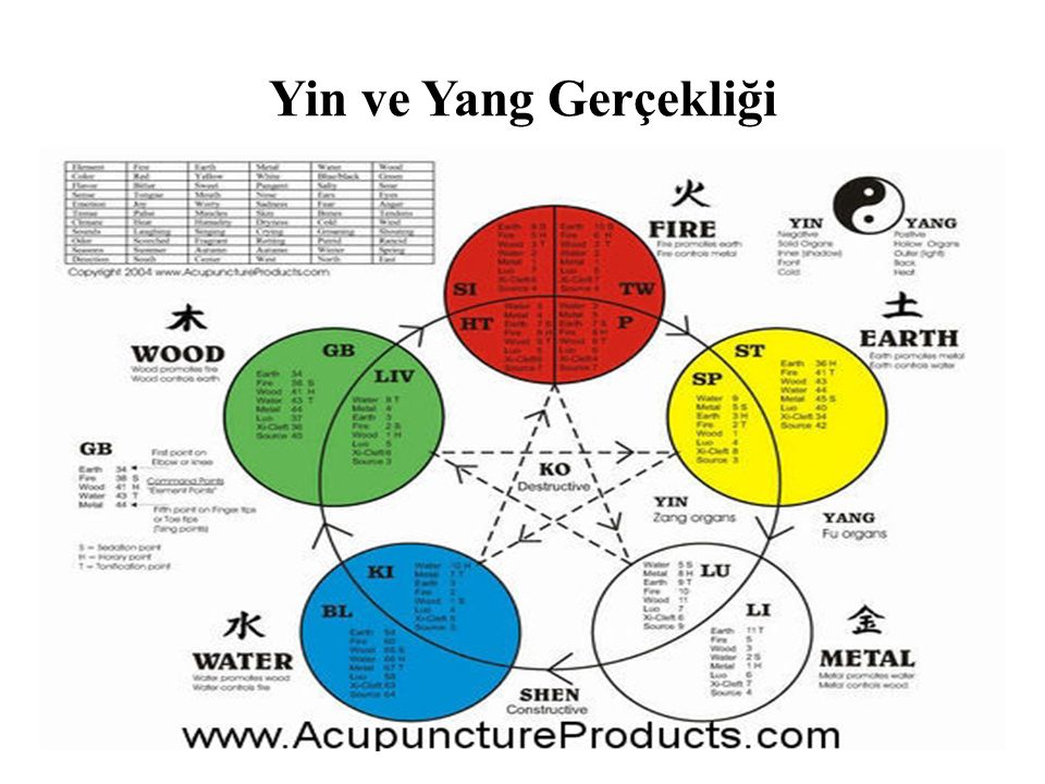 Yin ve Yang Gerçekliği