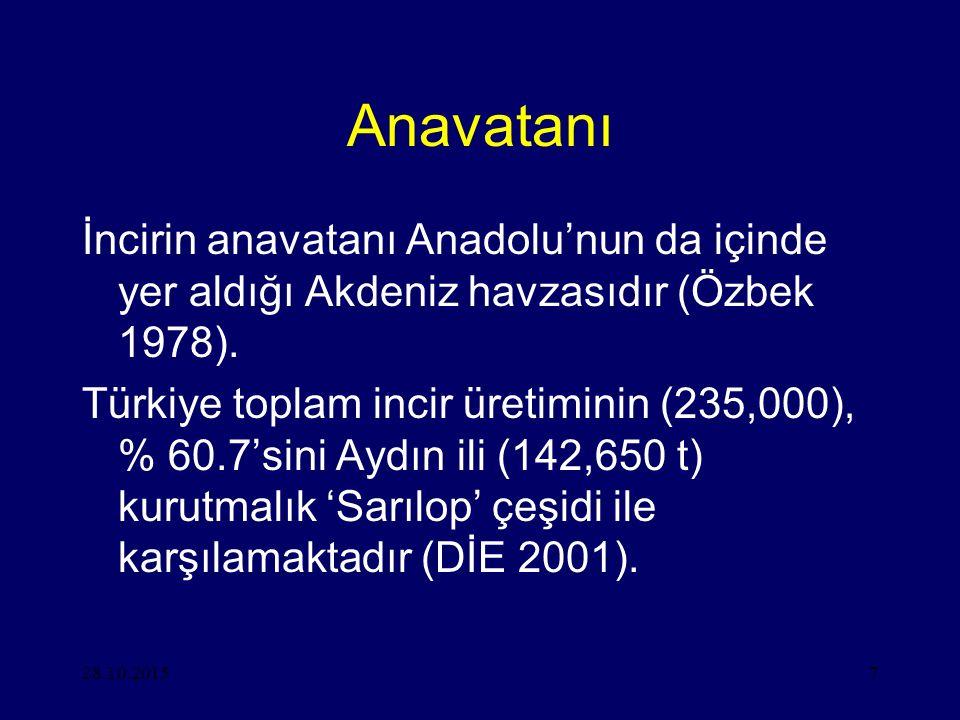 Anavatanı İncirin anavatanı Anadolu'nun da içinde yer aldığı Akdeniz havzasıdır (Özbek 1978).