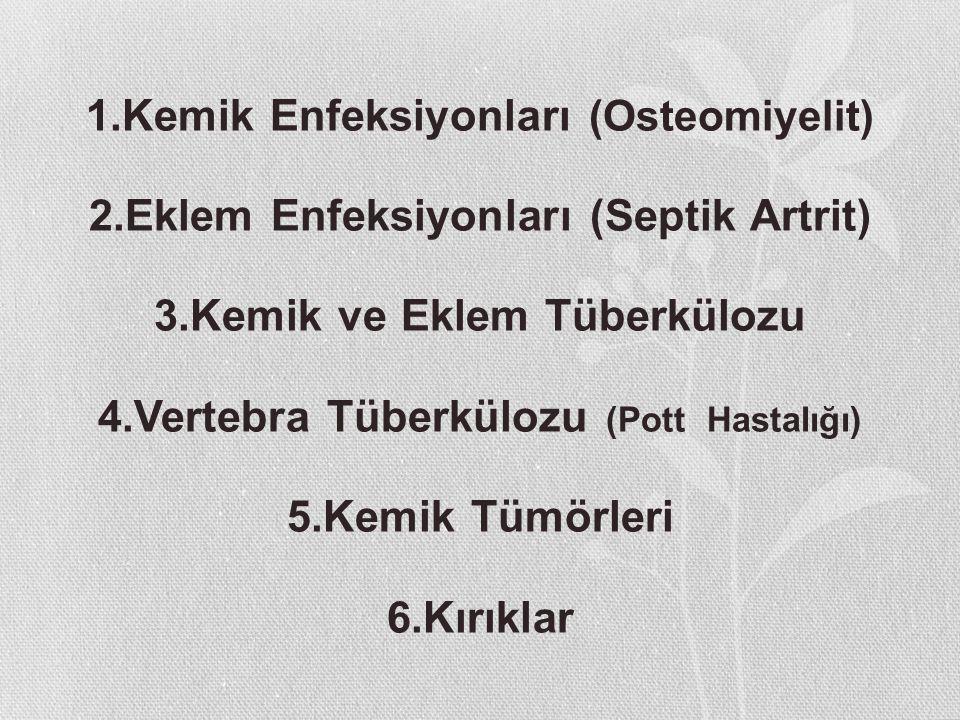1. Kemik Enfeksiyonları (Osteomiyelit) 2
