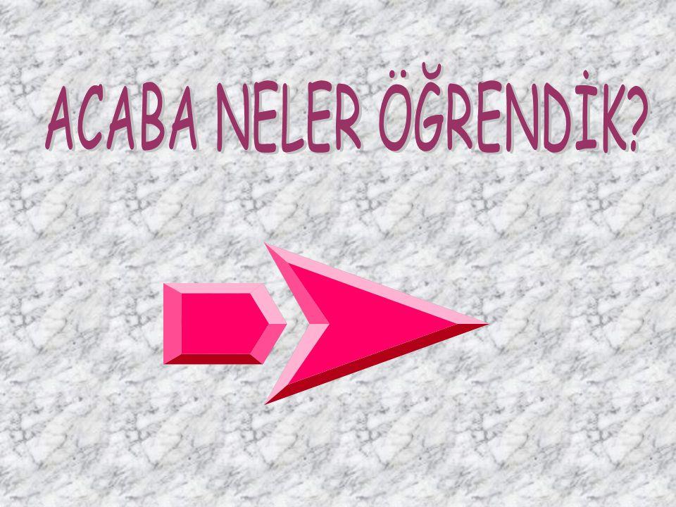 ACABA NELER ÖĞRENDİK