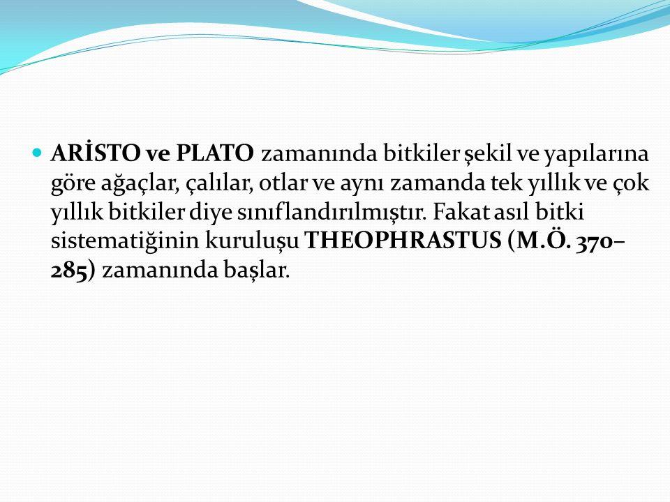 ARİSTO ve PLATO zamanında bitkiler şekil ve yapılarına göre ağaçlar, çalılar, otlar ve aynı zamanda tek yıllık ve çok yıllık bitkiler diye sınıflandırılmıştır.