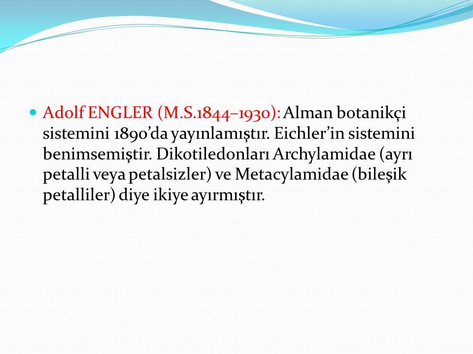 Adolf ENGLER (M.S.1844–1930): Alman botanikçi sistemini 1890'da yayınlamıştır.